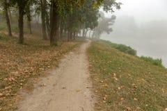 Parc brumeux près de lac Photos stock