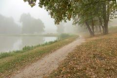 Parc brumeux près de lac images stock