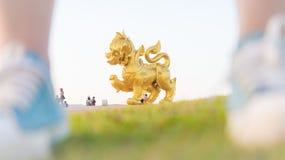 Parc Chiangrai de Singha Photographie stock libre de droits