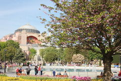 Parc close to Sainte-Sophie (Hagia Sophia) mosque Istanbul, Turkey royalty free stock photo