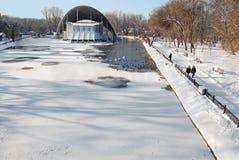 Parc couvert de neige d'hiver, oiseaux. Image stock