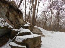 parc couvert de neige en hiver t?t photographie stock libre de droits