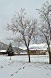 Parc couvert par la neige Photographie stock