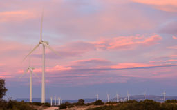 Parc d'énergie éolienne au coucher du soleil III Image stock