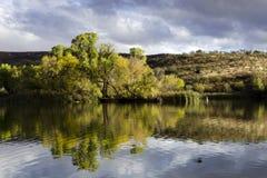Parc d'état de lac Patagonia photo stock