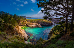Parc d'état de Lobos de point la Californie Image libre de droits