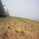 Parc d'état de Misty Interlude At Big Bay Image libre de droits