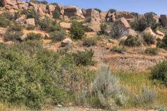 Parc d'état de pictographe en dehors de des facturations, Montana en été Photo libre de droits