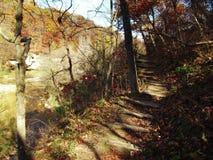 Parc d'état de rebords en automne Image stock