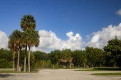 Parc d'état de rivière d'Oleta photos stock