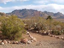 Parc d'état de Rockhound Image libre de droits