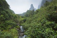 Parc d'état de vallée d'Iao sur Maui Hawaï Photographie stock libre de droits
