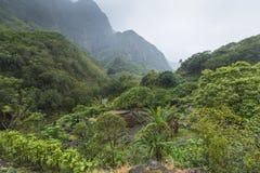 Parc d'état de vallée d'Iao sur Maui Hawaï Images stock