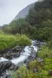 Parc d'état de vallée d'Iao sur Maui Hawaï Photos libres de droits