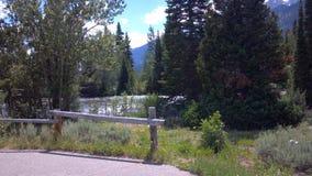 Parc d'état de Yellowstone Photos libres de droits