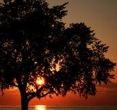 Parc d'état d'Edgewater à Cleveland, Ohio Photo libre de droits