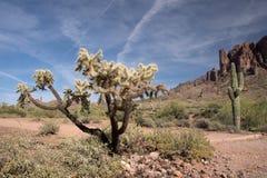 Parc d'état perdu de Néerlandais, Arizona, Etats-Unis image libre de droits