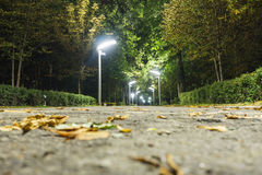 Parc d'allée de nuit Photos libres de droits