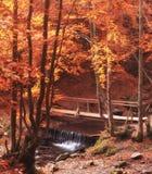 Parc d'automne avec la crique et le pont en bois Parc de chute de campagne images libres de droits