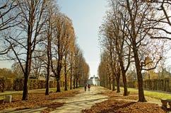 Parc d'automne de Pillnitz à la lumière du soleil photo stock