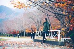 Parc d'automne, Japon Photo libre de droits