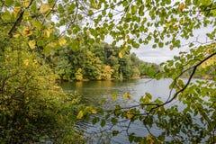 Parc d'automne Lac image stock
