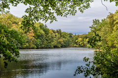 Parc d'automne Lac Images stock