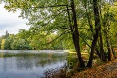Parc d'automne Lac image libre de droits