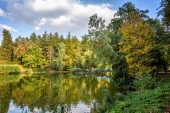 Parc d'automne 2008 lames d'or de lame de plantation d'automne sec d'automne d'air près de chêne octobre Russie tourne qui enroul photographie stock