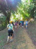 Parc d'aventure de Toro Verde de traînée Images stock