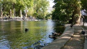 Parc d'Avignon Photographie stock