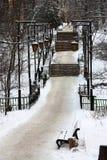 Parc d'hiver Images stock