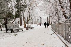 Parc d'hiver couvert de neige et de gelée Photographie stock