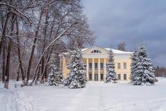 Parc d'hiver, manoir Photographie stock libre de droits