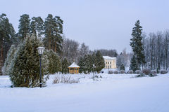 Parc d'hiver, manoir Image libre de droits