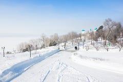 Parc d'hiver par le fleuve Amur Photo stock