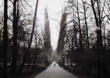 Parc d'Izmailovo Photos stock