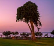 Parc d'océan au coucher du soleil photo libre de droits