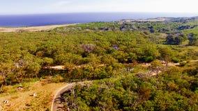 Parc d'Otway Nationa de cap, Australie Silhouette d'homme se recroquevillant d'affaires Photographie stock libre de droits