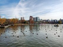 Parc d'Ueno photos libres de droits