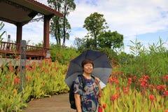 Parc d'une cinquantaine d'ann?es de dongshanshuixi de visite de femme, adobe RVB image stock