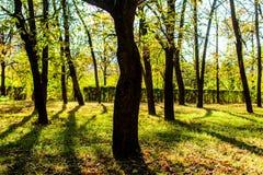 Parc dans Botevgrad, Bulgarie Photographie stock