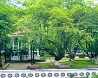 Parc dans Cali, Colombie Photo stock