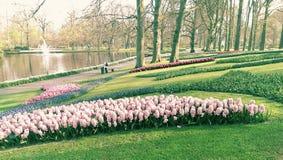 Parc dans Keukenhof, Pays-Bas Images libres de droits