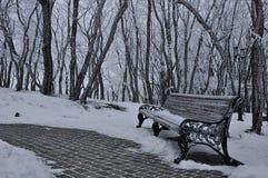 Parc dans la neige pendant l'hiver Photos libres de droits