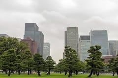 Parc dans la ville Photo libre de droits