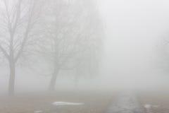 Parc dans le brouillard Photographie stock libre de droits