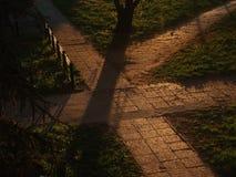 Parc dans le lever de soleil photos stock