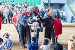 Parc de Ba à l'est de Bangkok, Thaïlande Photographie stock libre de droits