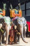 Parc de Ba à l'est de Bangkok, Thaïlande Photos libres de droits
